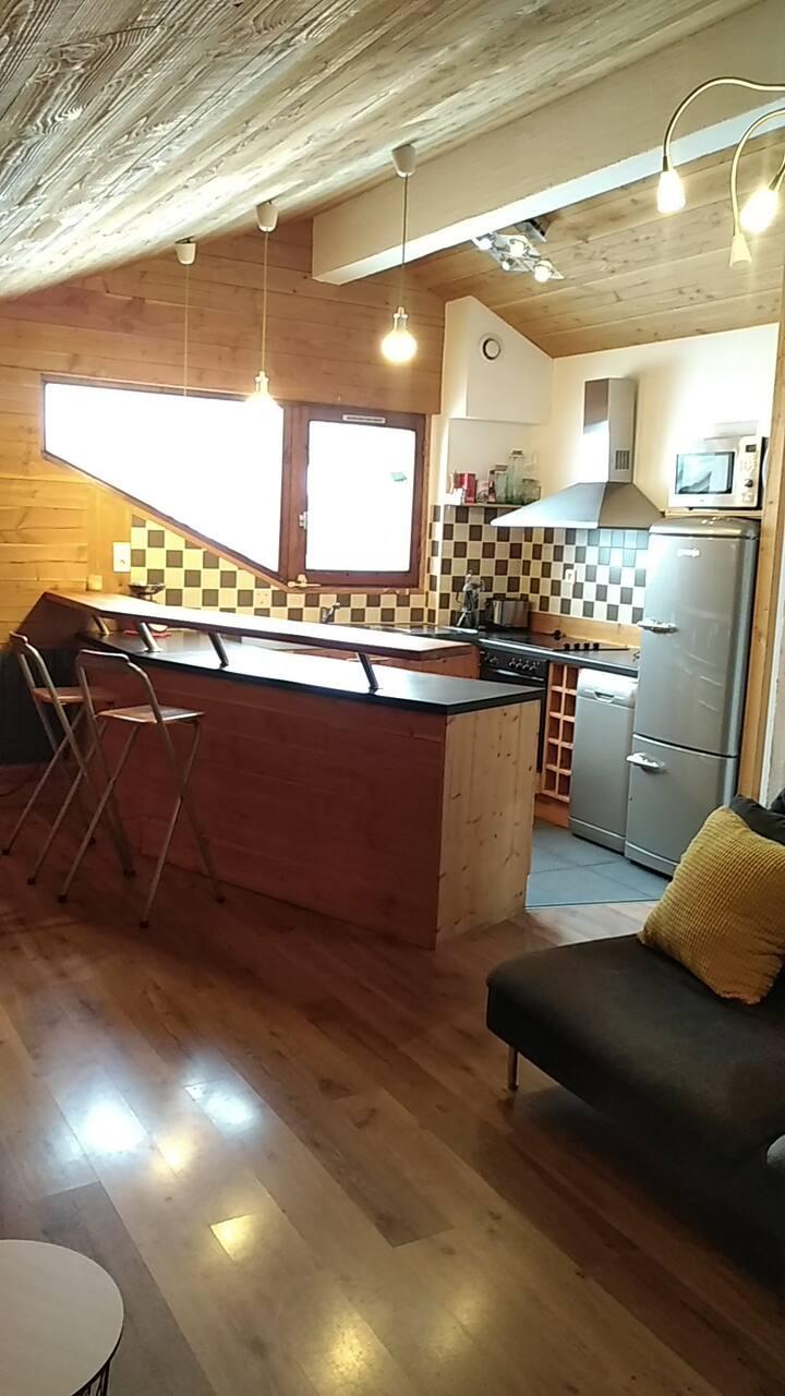 Appartement 6 couchages sous les toits station ski