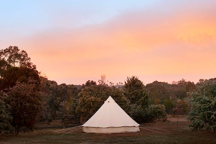 Goldfield Glamping - Rose Tent