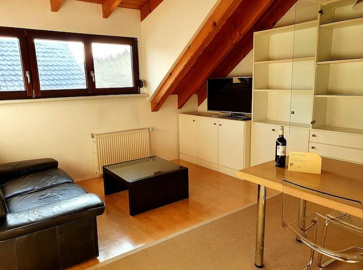 Apartment - 40 qm - Voll ausgestattet - Nähe SAP