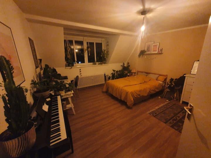 25 qm Zimmer zentral mit Dachterrasse & Wohnzimmer
