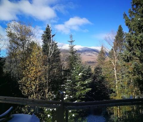Roche, Pin & Lune, chalet à la cime des arbres