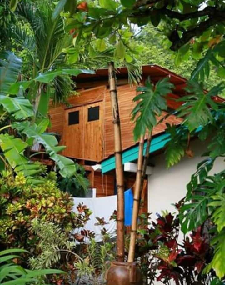 Hawk's Treehouse Loft