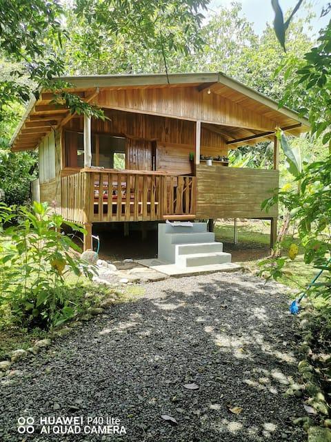 Corcovado Dream House