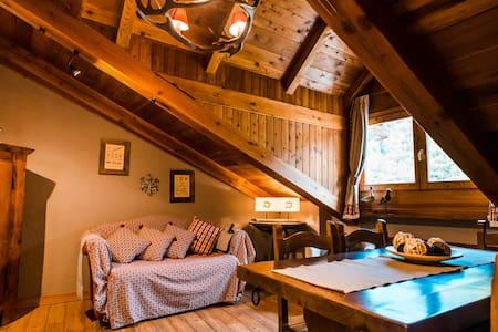 AVA L'BACIAS: typical mountain apartment