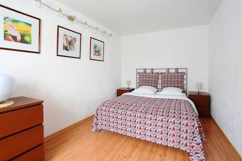 Уютная двухкомнатная квартира-студия в центре