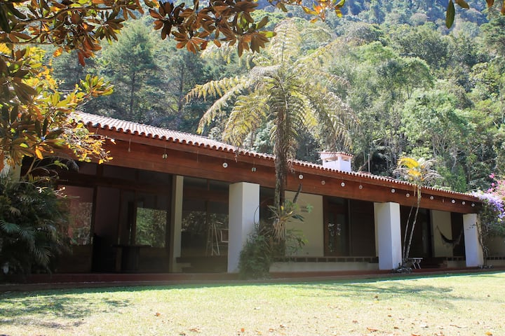 Amazing property in the middle of Atlantic Forest