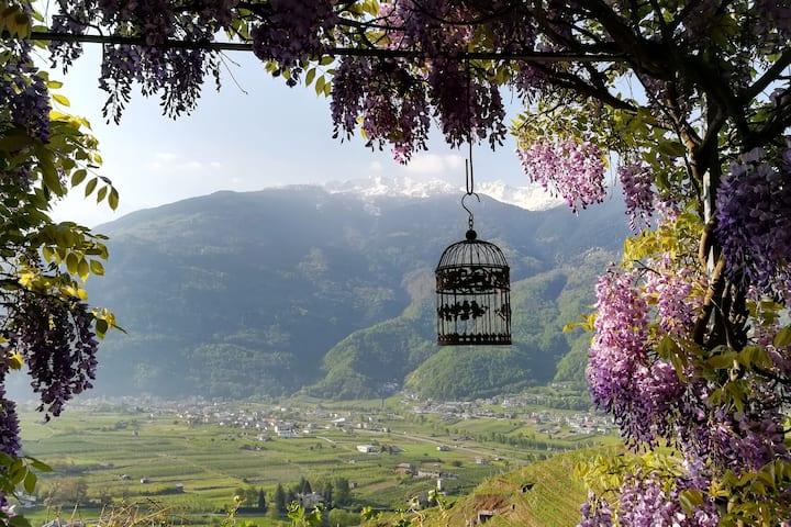 Casa con vista in Valtellina (SO)