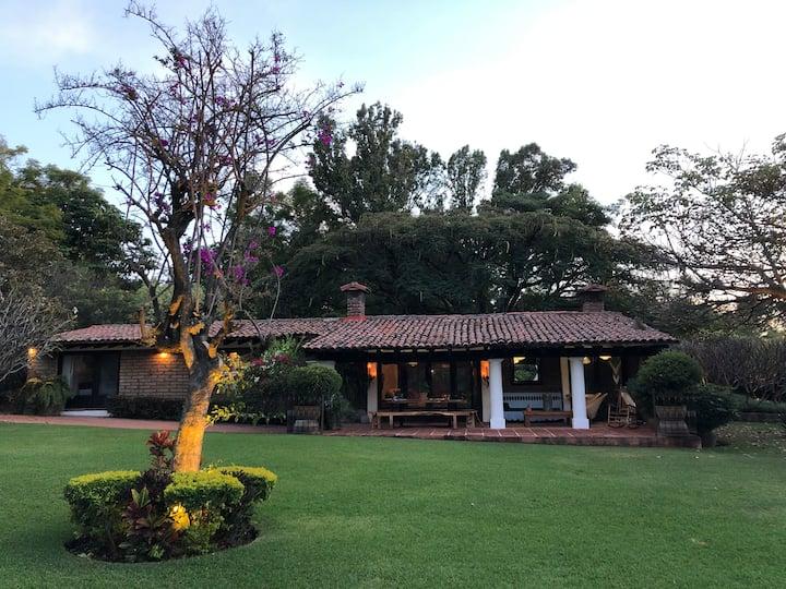 Rancho Pico, Cuernavaca (desinfección profunda)