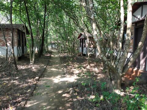 Camp Riveredge Paradise - Rustic Cabin 1