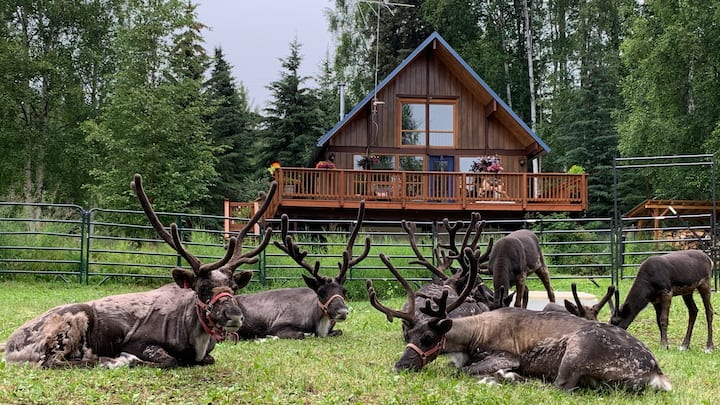 The Reindeer Haus at Running Reindeer Ranch