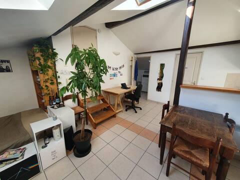 Petit Studio Montpellier Proche Gare