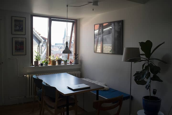 Cosy, central Øgade apartment with cathedral view