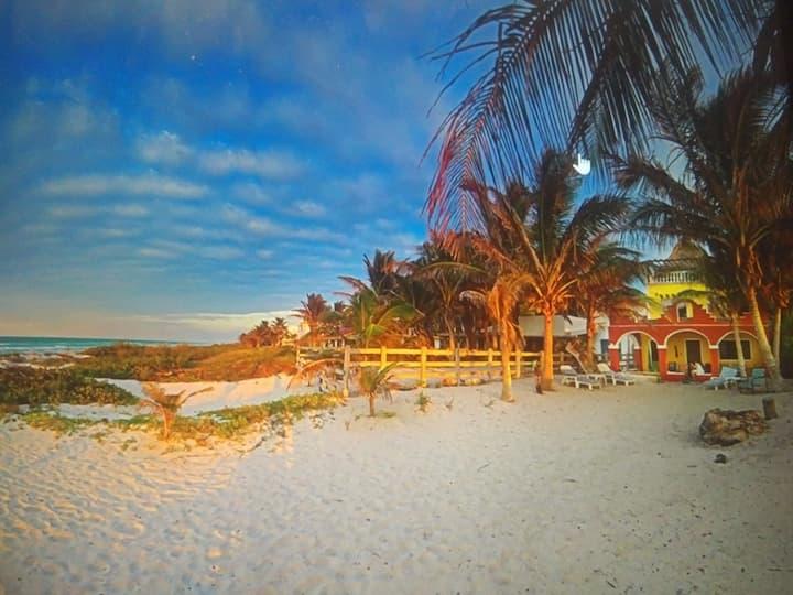 Stunning  Beachfront walkout-AC , 1 BR, Wifi