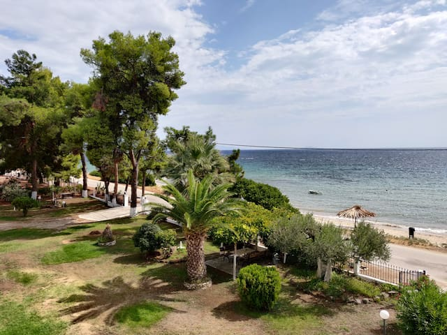 ENTIRE APART. CHALKIDIKI 40m FROM SEA WITH PARKING