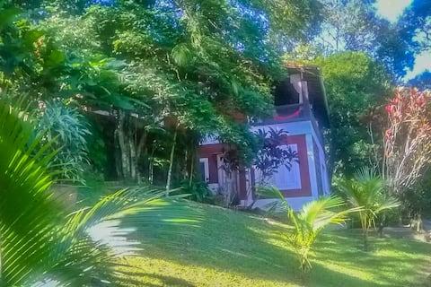 Green paradise loft in Rio de Janeiro mountains