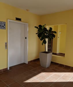 There is elevator accessibility to the apartment with wide hallways.
