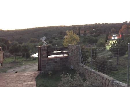 El final de la Calle Venus entra en la Hacienda el Escorial, en la puerta hay dos caballitos y un lago en la entrada. Antes de llegar hay un tramo de camino rural sin asfaltar no demasiado largo, animo que vale la pena!!!