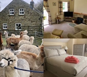 The Brambles, cosy farm cottage and 300 alpacas!