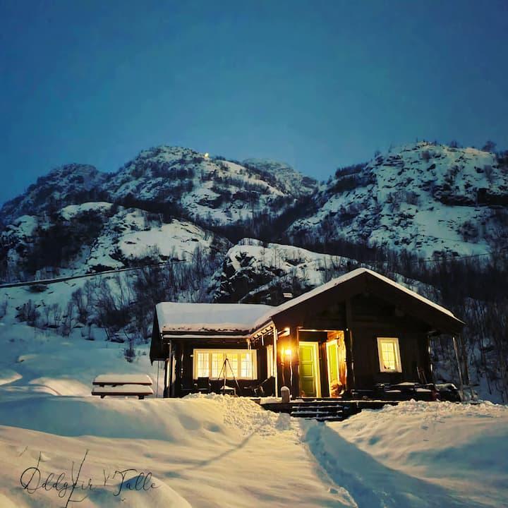 Log Cabin, Valldalen, Røldal.