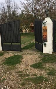 Puerta de acceso al camino de la finca a través de la verja de fuera