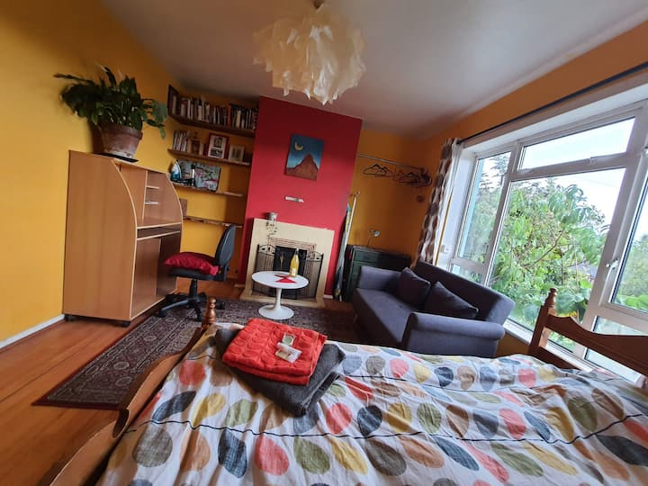 Bright large Room in a friendly household in Lewes