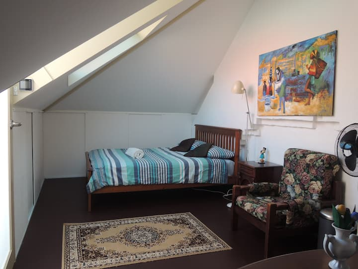 Penthouse room spacious in big house city centre