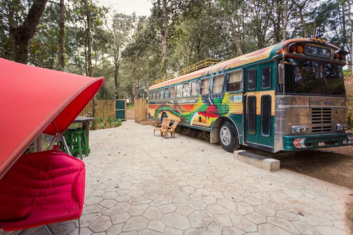 A Chicken-Bus inside the forest!!!