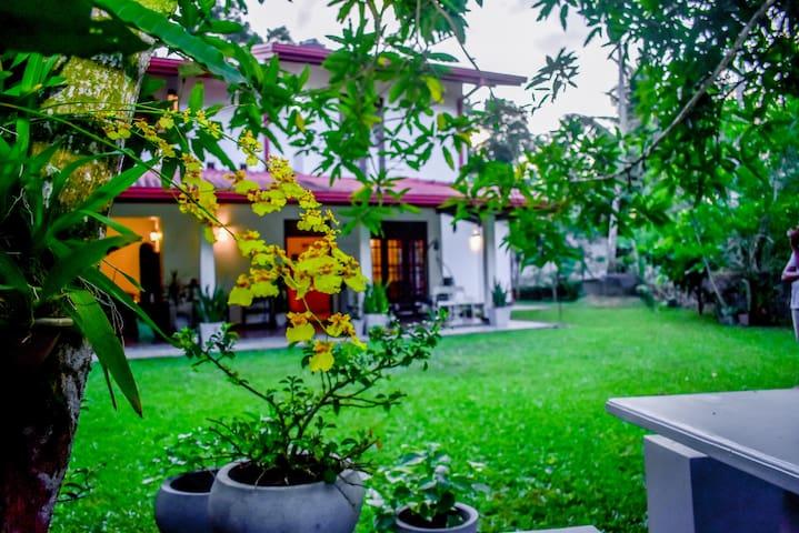 Bellis Residence