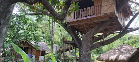 Treehouse at the boutique Pirates Diving Resort