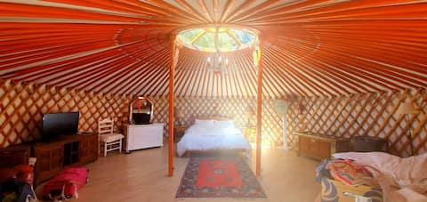 Romantisk mongolsk jurt hekket i ren natur.