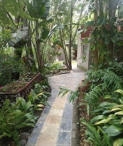 Pathway to guest rooms 1,5m