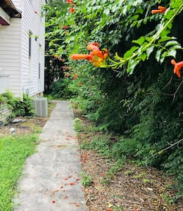 There is a trail to the back of the house where is the entrance of the home.