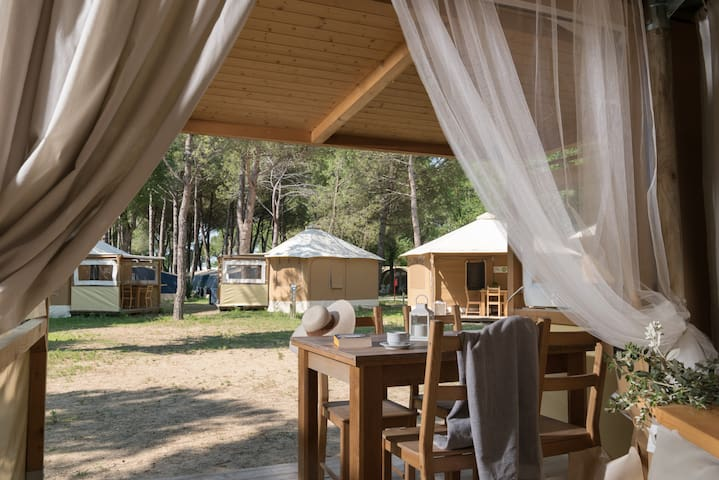 EcoLodge Tent in the pine forest near the beach