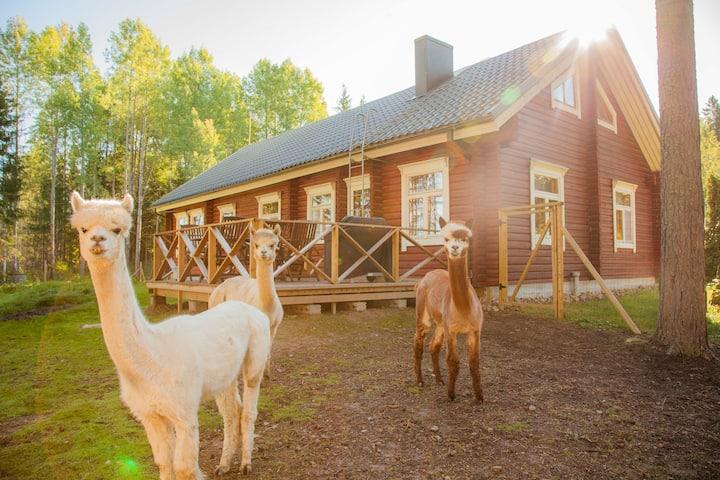 Alpakkavillan Heinähattu, hirsitalo maaseudulla