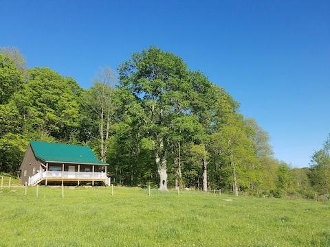 Cozy Cabin with a Vista - 600 Private Acres