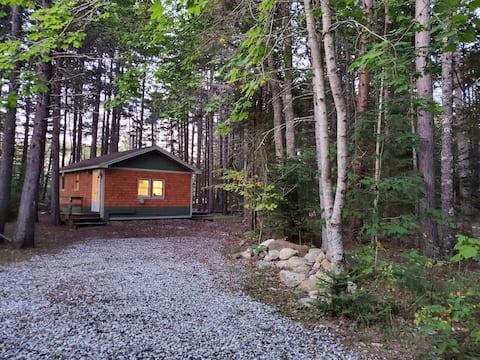 Hidden Haven A Rustic Retreat In St. George, Maine