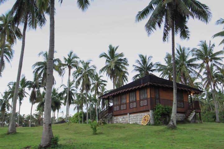 Bahay Trinidad  Bufi Farm LaiYa  San Juan Batangas