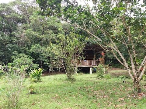 Jolie cabane en bois dans un grand jardin arboré
