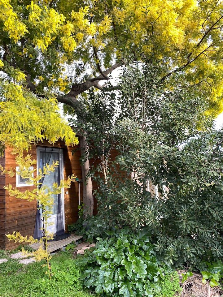 Chalet ,terrasse, jardinet, près de Sophia,parking