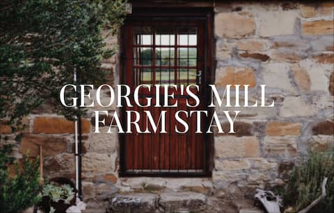 Georgie's Mill