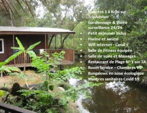 Bungalow-Economy-Bathroom-Forest View
