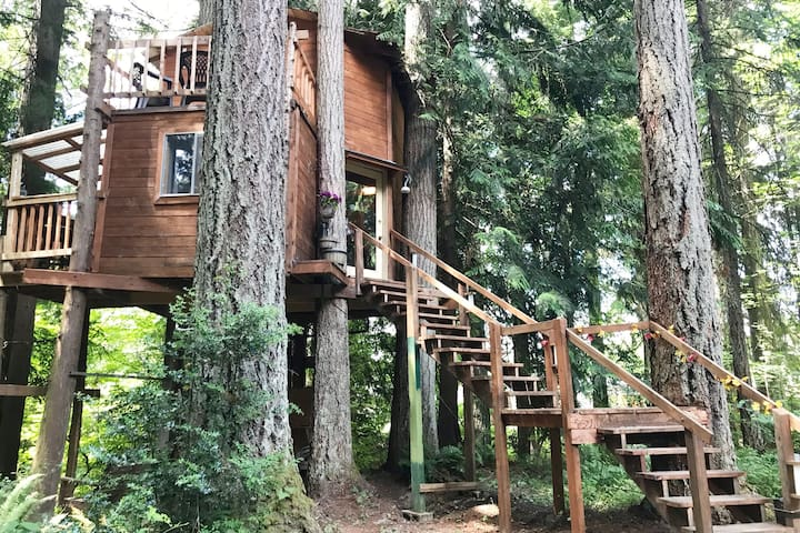 AirBnTree at Adams Cove