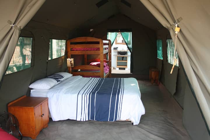 "Warthogs Safari Camp - ""Deluxe"" Family Safari Tent"