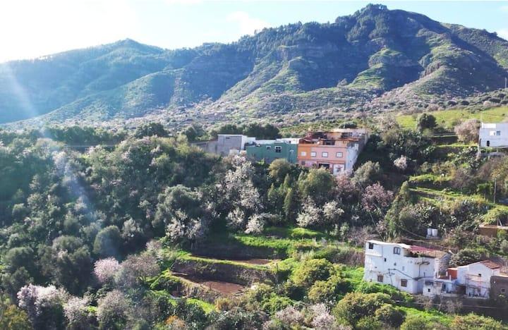 Agroturismo-Casa Huerta El Mirador de Valsequillo