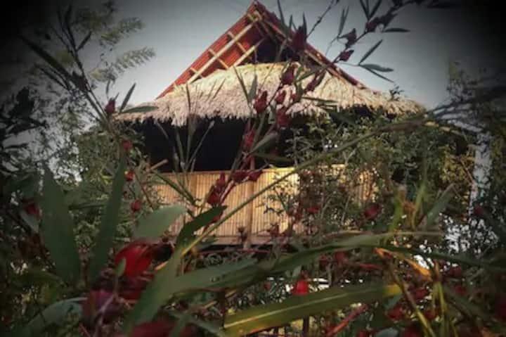 Cabaña rural en vivienda sostenible