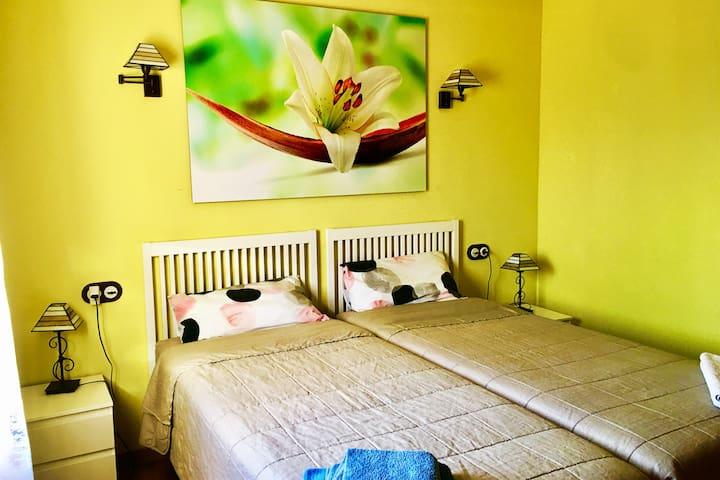 Habitación con dos camas de 90 por 2 m.