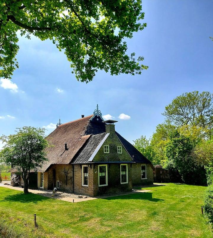 Knus groen huisje met jacuzzi en sauna
