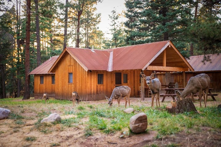 Corkins Lodge - Bunkhouse Cabin