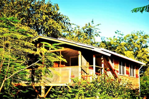 Compass Cottage A Gold Standard Tree Top Home