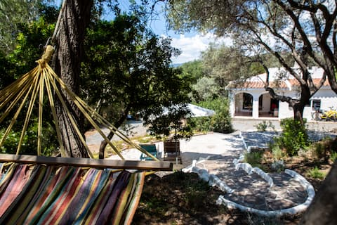 Little Lilly - Cozy Villa among Olive Trees